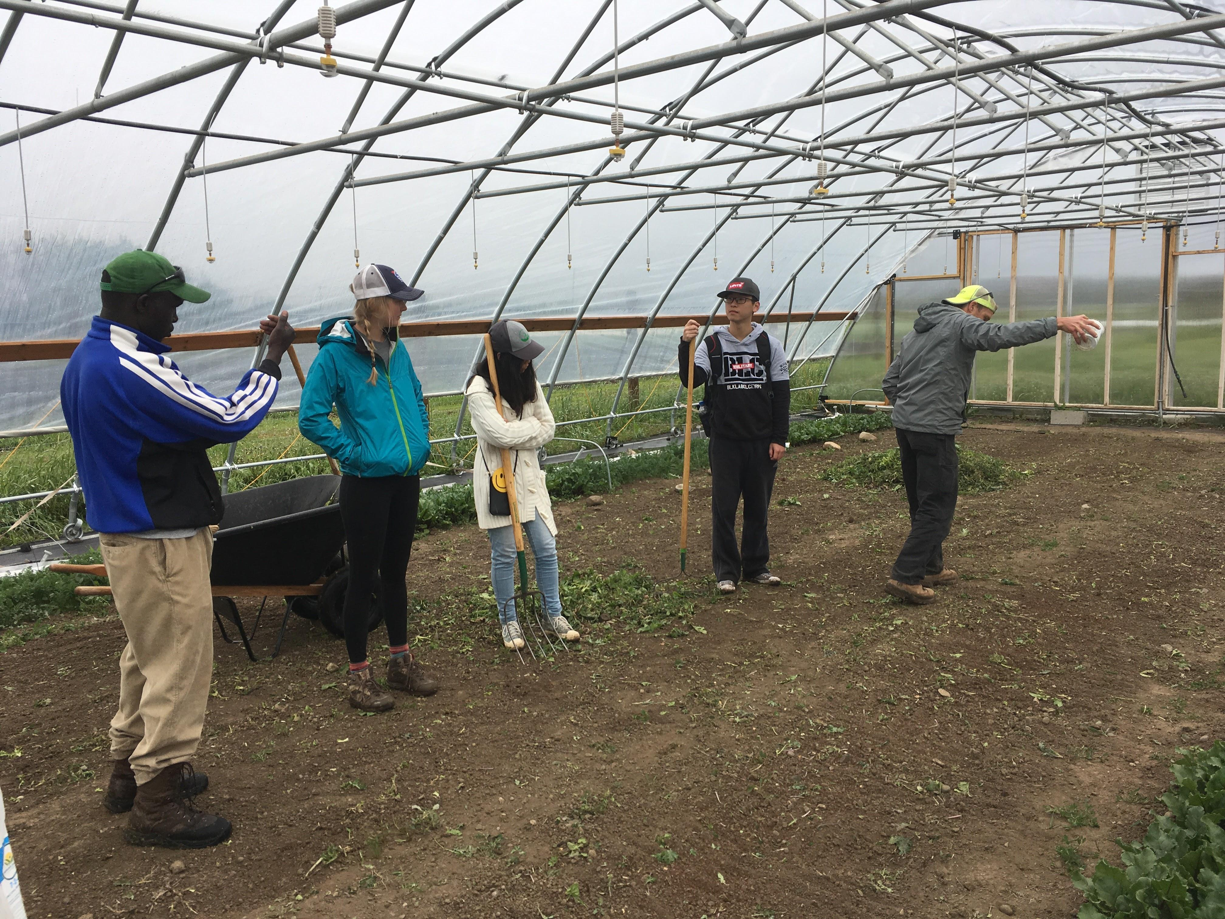 Towne\'s Harvest Garden - Towne\'s Harvest Garden | Montana State ...