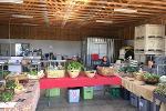garden-market 2