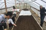 greenhouse prep